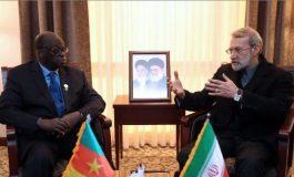 Le président de l'assemblée nationale iranienne reçoit Moustapha Niasse avec le drapeau camerounais