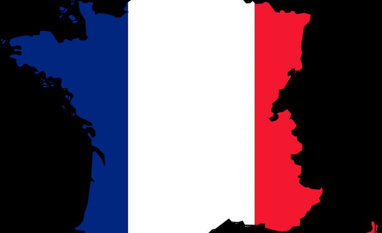 Dépossédé du nom de domaine france.com, Jean René Frydman attaque la France pour le récupérer
