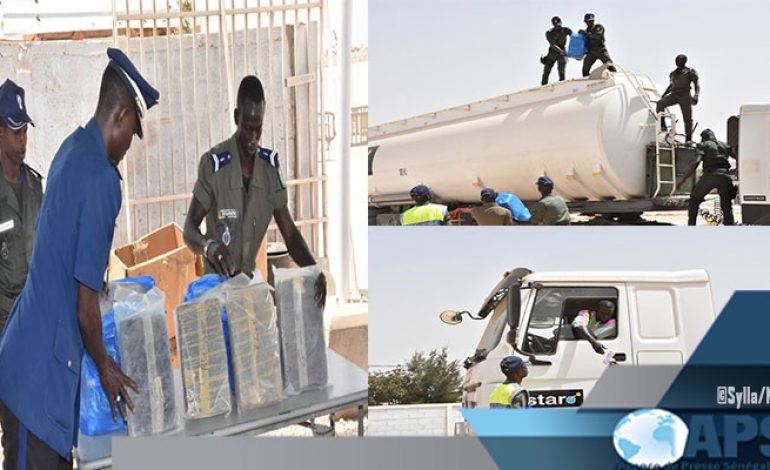 304 kg de chanvre indien saisis par la gendarmerie sénégalaise à Diamniadio