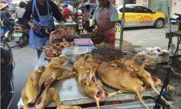 Abattre les chiens pour manger leur viande est illégal en Corée du Sud
