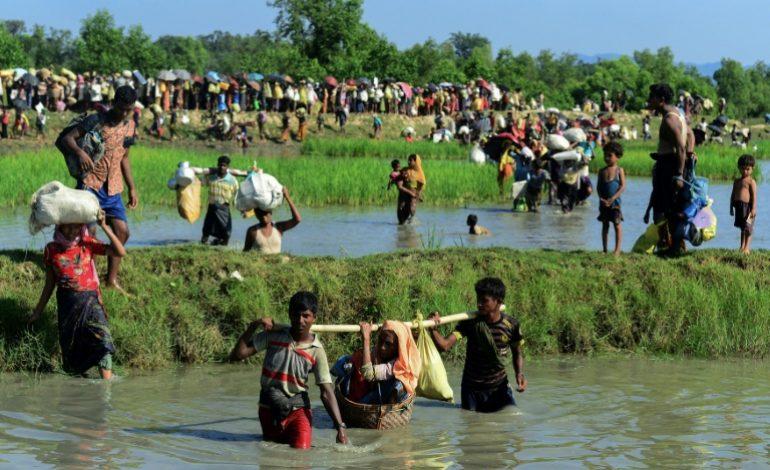 Selon l'ONG Fortify Rights, l'armée birmane s'est livrée à une préparation systématique du génocide des Rohingyas