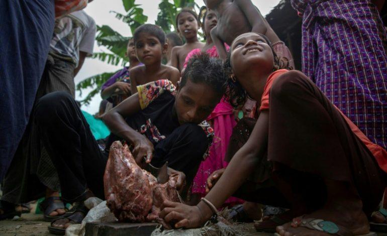 Un an après l'exode massif des Rohingyas de Birmanie, leur avenir reste très sombre