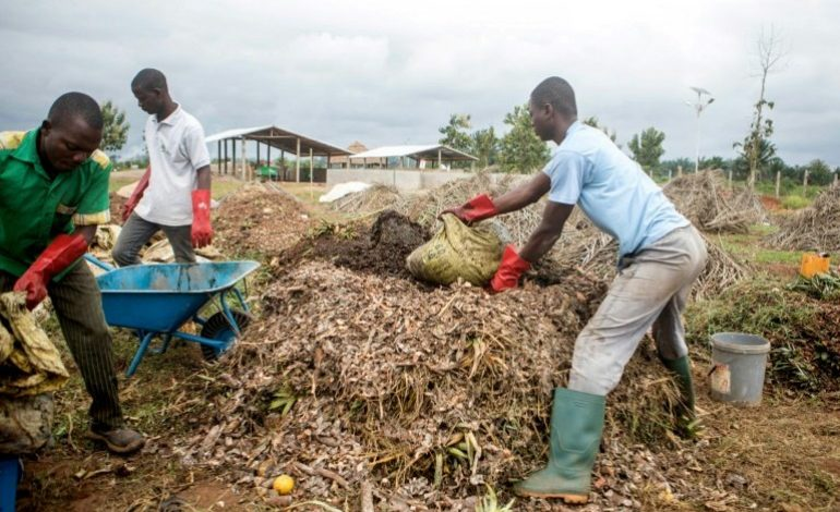 A Houègbo au Benin, «les ordures sont devenues de l'or»