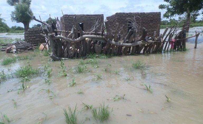 Inondation à Gouloumbou : Des dizaines de millions emportés par les eaux
