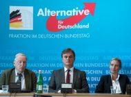 """L'extrême droite allemande pour une sortie de l'UE """"en dernier recours"""""""