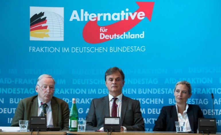 L'extrême droite allemande pour une sortie de l'UE «en dernier recours»