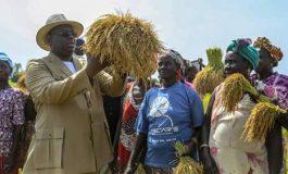 Passe d'armes entre Macky Sall et Abdoulaye Baldé, maire de Ziguinchor