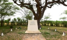 Centenaire du 11 novembre: six symboles personnels du conflit