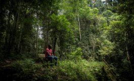 Inquiétudes environnementales autour d'un projet de mine de bauxite au Ghana
