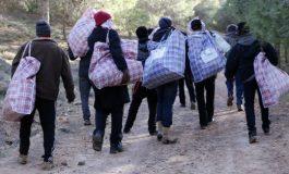 Traversée de la Méditerranée : Le calvaire des subsahariens dénoncé par l'Organisation Internationale pour les Migrations