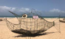 GOBIE, le poisson qui gobe le plastique sur les plages du Sénégal