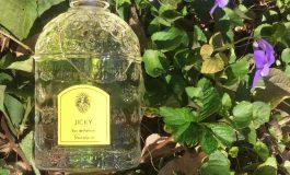 Une collection de parfum Guerlain en hommage à Serigne Touba