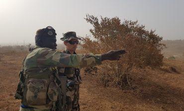 Formation « Combat de l'éclaireur » pour des commandos sénégalais par les Eléments Français au Sénégal