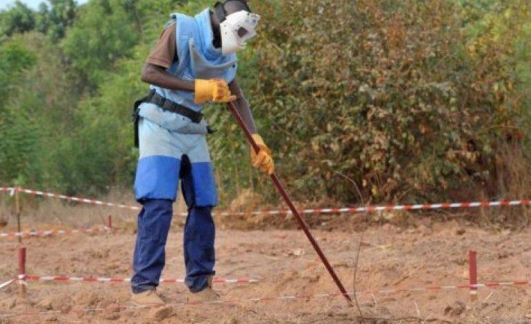 Les opérations de déminage suspendues en Casamance après l'enlèvement de cinq démineurs