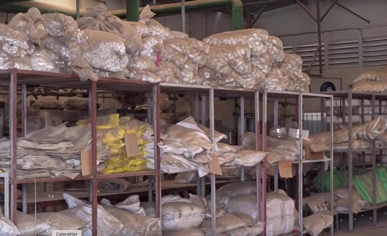 500 tonnes de déchets toxiques stockés aux ICS Senchim: des risques graves pour les populations de Thiaroye