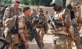 """Une vingtaine de jihadistes """"neutralisés"""" au Mali par les forces françaises et maliennes"""