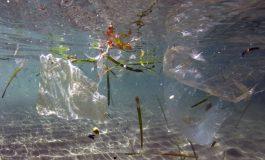La France, plus gros producteur de déchets plastiques en Méditerranée, selon WWF