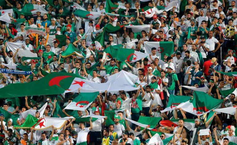 28 avions mobilisés pour transporter les fans de l'Algérie en Egypte pour la finale face au Lions du Sénégal