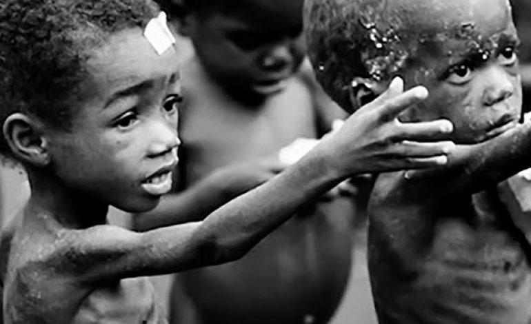 Les crises alimentaires mondiales risquent de se multiplier selon la FAO