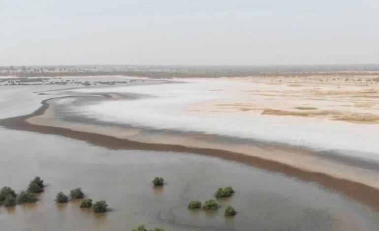 276 millions FCFA encaissés par les acteurs du pôle touristique du Sine Saloum