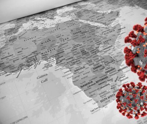 Covid-19 en Afrique: l'OMS encourage la recherche sur les médecines naturelles