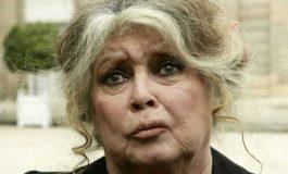 """""""J'ai envie de quitter la France tellement c'est devenu dégueulasse"""": le coup de gueule de Brigitte Bardot"""