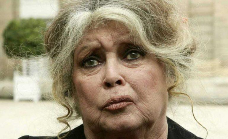 «J'ai envie de quitter la France tellement c'est devenu dégueulasse»: le coup de gueule de Brigitte Bardot