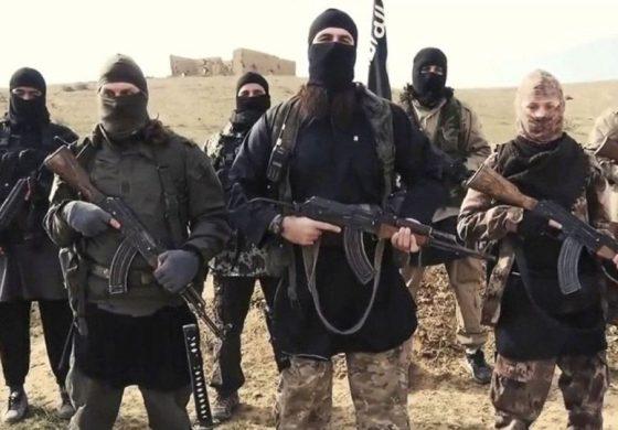 Les États-Unis alertent sur le développement à l'international de l'État islamique notamment en Afrique