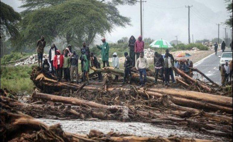Plus de 200 morts après de fortes pluies