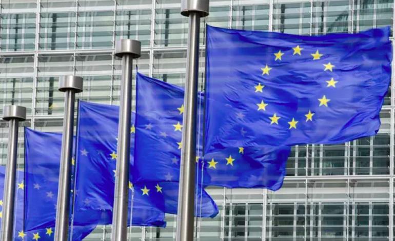 La Belgique, la Bulgarie, la Finlande, la Pologne et la Suède rappelés à l'ordre par Bruxelles pour manifestations graves de racisme et de xénophobie