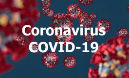L'Amérique Latine, région la plus touchée par l'épidémie de Covid-19