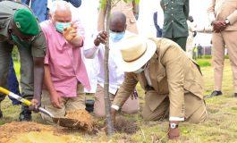 Macky Sall célèbre la journée nationale de l'arbre à Diamniadio
