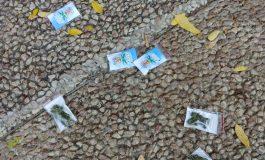 Des sachets de cannabis tombent du ciel...en Israël