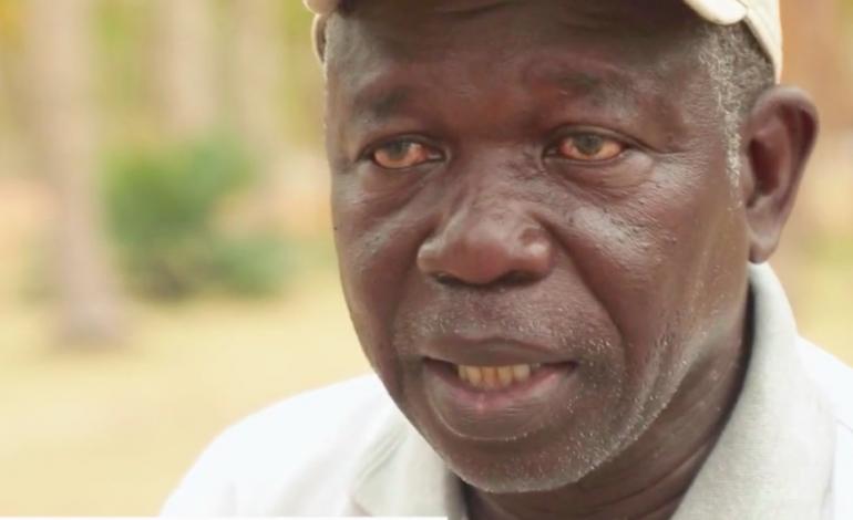 Gora Ndiaye fait pousser des légumes sur des terres desséchées