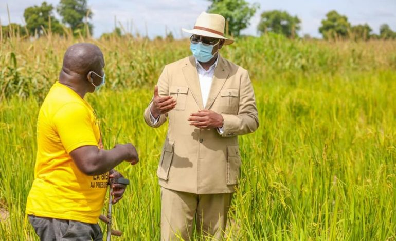Macky Sall loue les réalisations de la coopérative pour le développement local de Sibassor