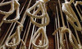 Près d'une cinquantaine de personnes exécutées en octobre en Egypte