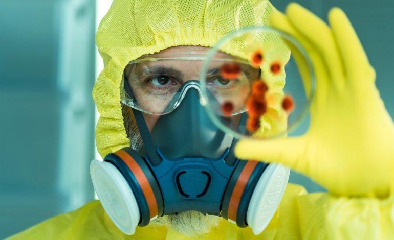 Chapare, ce virus proche d'Ebola qui inquiète les scientifiques