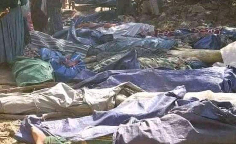 Plus de 100 personnes tuées à Benishangul-Gumuz, dans l'ouest de l'Ethiopie