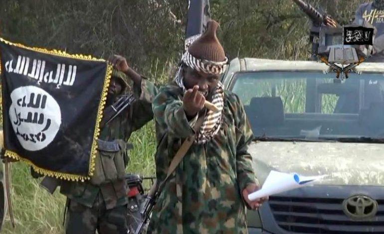 Au moins six soldats tués dans une attaque de Boko Haram à Sagmé (Cameroun)