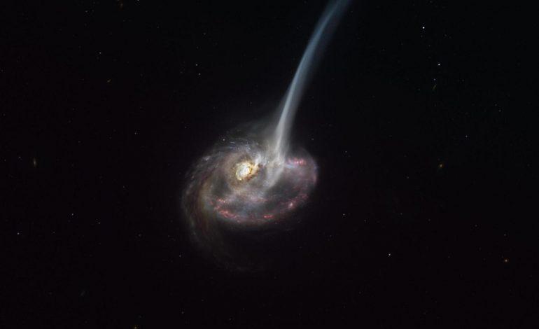 Mort de la galaxie lointaine ID2299