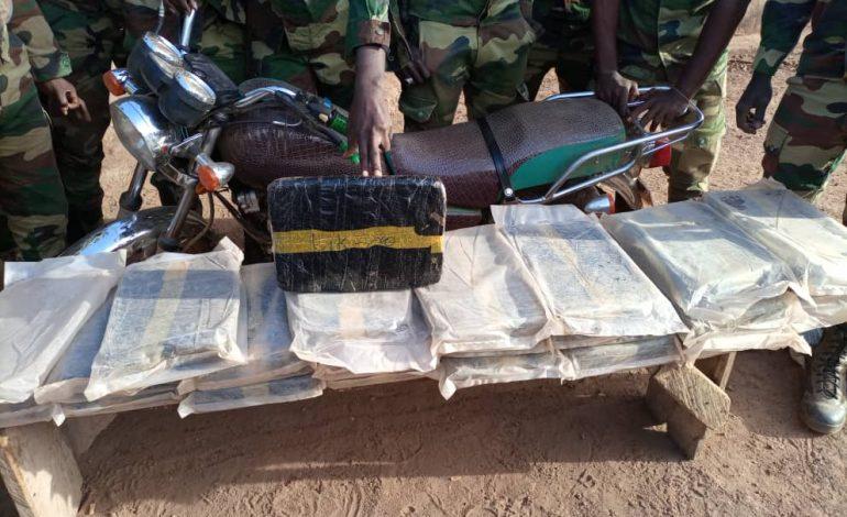 42 kg de chanvre indien saisis à Balmadou (Sédhiou) et 34 à Khossanto (Kédougou)