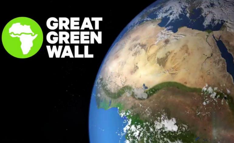 La BAD annonce un engagement de 6,5 milliards de dollars pour la Grande Muraille Verte