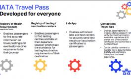Emirates et Etihad vont tester un passeport numérique IATA Travel Pass
