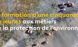 Une opération de nettoyage pour sauver la mangrove de Joal-Fadiouth