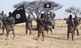 Le chef de Boko Haram Abubakar Shekau est mort