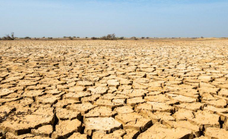 29 millions d'habitants de six pays du Sahel ont besoin d'une aide humanitaire