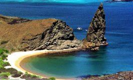 Leonardo DiCaprio donne 43 millions de dollars pour la réintroduction d'espèces aux Iles Galapagos