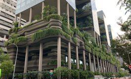Les villes passent au vert: tour du monde en images