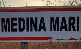 Un convoi de bois en partance pour la Gambie intercepté Médina-Mary (Vélingara)