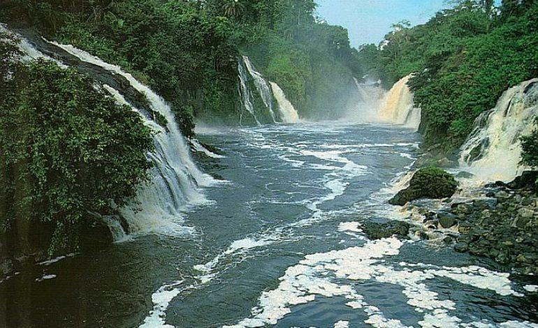 Le parc national d'Ivindo (Gabon) classé au Patrimoine mondial de l'Unesco